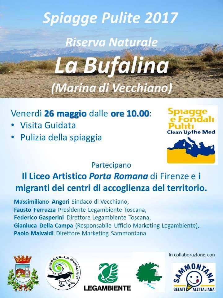 Bufalina copia-2