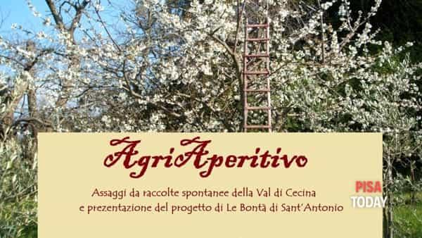 'Agri aperitivo' a Montescudaio