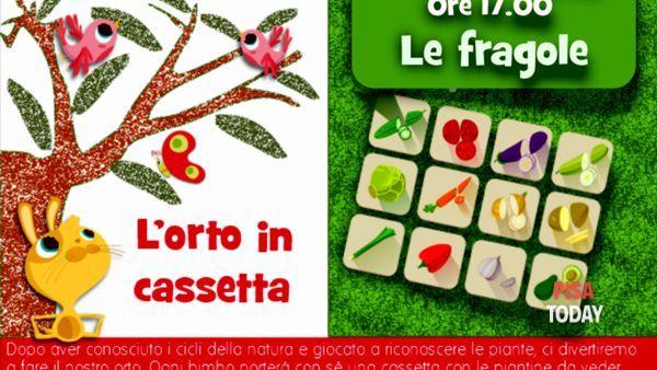 L'orto in cassetta: le fragole - laboratorio all'aperto per bambini