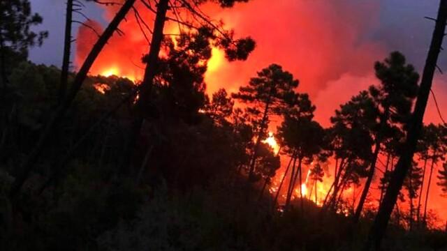 Incendio Monti Pisani Vicopisano 14 agosto 2021
