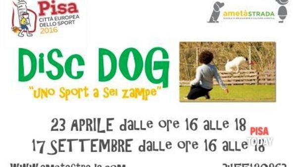 Disc Dog: uno sport a sei zampe