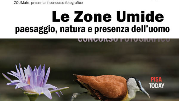 """Mostra """"Le zone umide"""""""