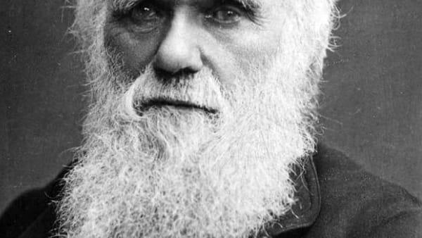 Caffè Scienza 180 anni fa: il viaggio di Darwin che avrebbe cambiato le scienze biologiche