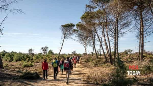 Escursione a San Rossore fino al mare