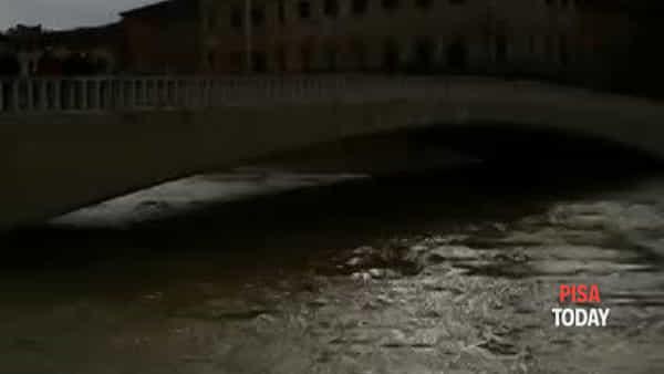Il montaggio dei panconcelli sulle spallette dell'Arno