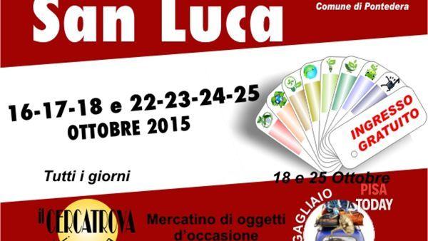 Expo San Luca