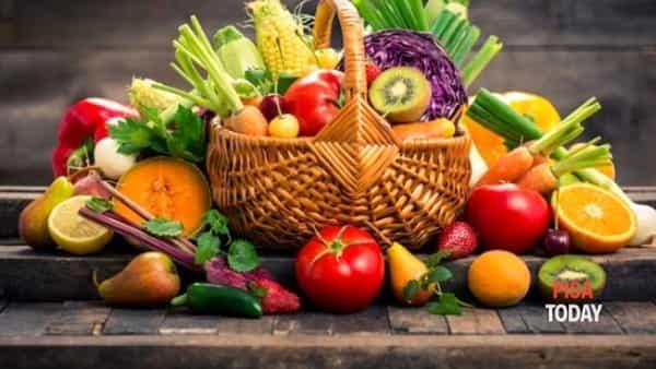 Genuino cibo contadino: inaugurazione