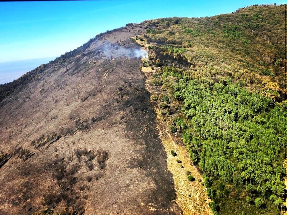 Monte Pisano dopo l'incendio